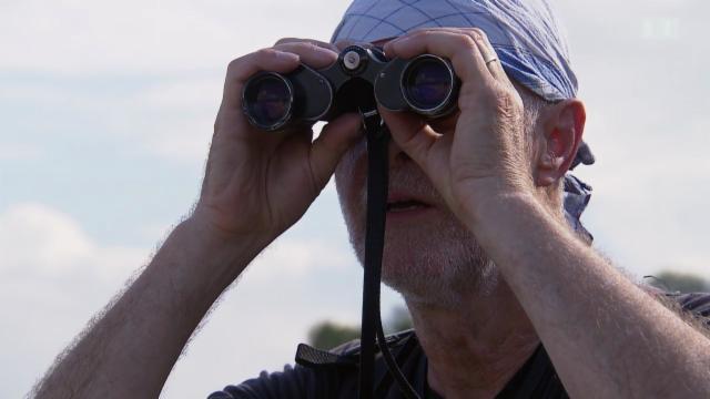 Leica Fernglas Mit Entfernungsmesser Test : Kassensturz tests feldstecher test eine trübe bilanz