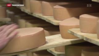 Video «Umstrittener «Mercosur-Gipfel» in Bern» abspielen