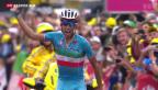 Video «Vincenzo Nibali gewinnt 19. Etappe der Tour de France» abspielen
