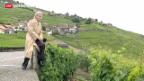 Video «Initiative zur Rettung des Lavaux» abspielen