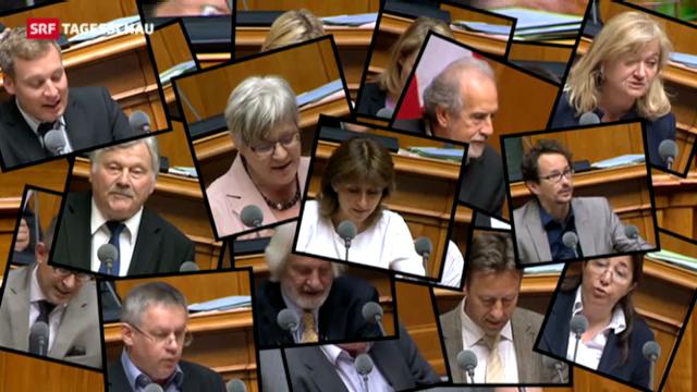 Tagesschau 20.6.13: Nationalrat fegt SVP-Initiative weg