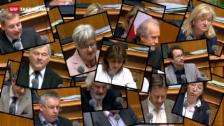 Video «Tagesschau 20.6.13: Nationalrat fegt SVP-Initiative weg» abspielen