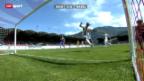 Video «Fussball: Sion - Basel» abspielen