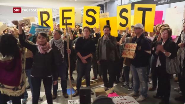 Video «Massenproteste gegen Trumps Einreisepolitik» abspielen