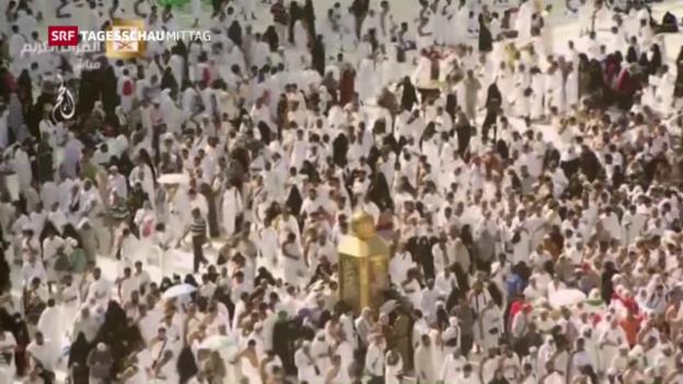 Video «Muslime beginnen Hadsch-Pilgertreffen» abspielen