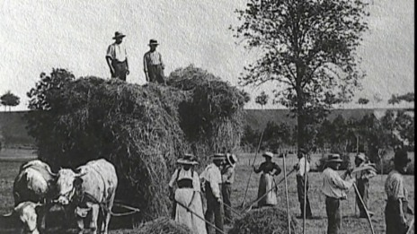 Video «Landwirt» abspielen