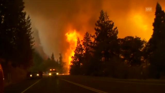Flammen walzen über den Yosemite Nationalpark (unkommentiert)