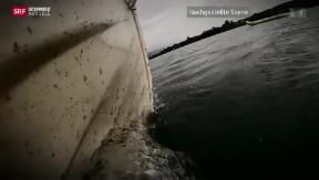 Video «Bootsunfall Bielersee: Rentner vor Gericht» abspielen