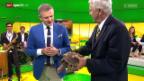 Video «Zoo-Direktor Alex Rübel zeigt die Köhlerschildkröte» abspielen