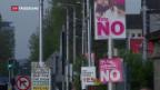 Video «Irland entscheidet über Abtreibungsverbot» abspielen