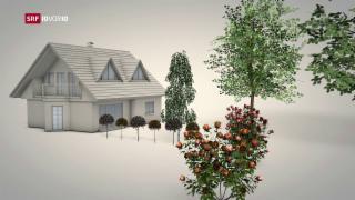 Video «Immer mehr Haushalte sind autofrei» abspielen