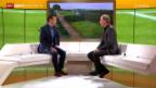 Video «Tennis: Studiogast Heinz Günthard, Gespräch Teil 1» abspielen