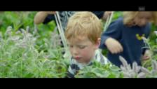 Video «Trailer von «Tomorrow»» abspielen