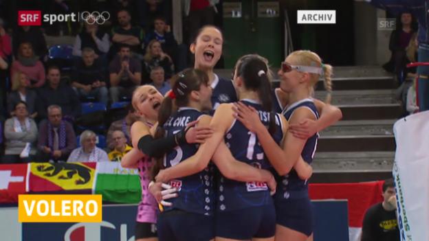 Video «Volleyball: Volero Zürich in CL-Viertelfinal ausgeschieden («sportaktuell», 11.02.2014)» abspielen