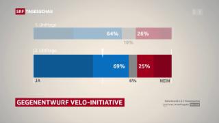 Video «Velo soll in die Verfassung» abspielen