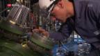 Video «FOKUS: Das Wachstum der Pharma-Firma Lonza» abspielen