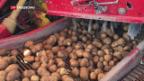 Video «Landmaschinen-Sharing» abspielen