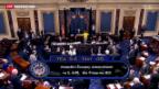 Video «Waffengesetze in den USA» abspielen