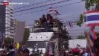Video «Thailändische Regierungsgegner auf den Strassen» abspielen