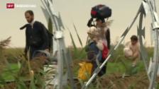 Video «175 Kilometer langer Grenzzaun» abspielen