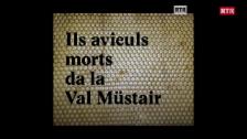 Laschar ir video «Ils avieuls morts da la Val Müstair»