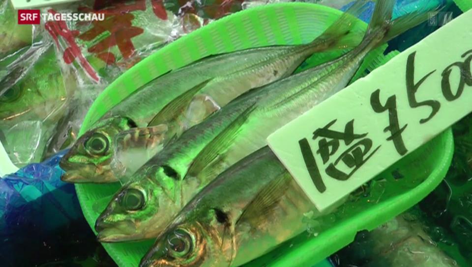 Der Tsukiji-Fischmarkt in Tokio