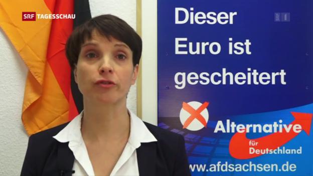 Video «Frauke Petry verzichtet auf Spitzenkandidatur» abspielen