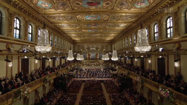 Video «Neujahrskonzert 2017 - Gustavo Dudamel setzt eine Rekordmarke» abspielen