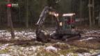 Video «Klimaschutz durch Hochmoorschutz» abspielen