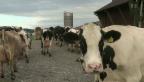 Video «Öko-Zwang für Bauern» abspielen