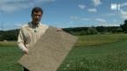 Video «Isolationsplatten aus Gras» abspielen