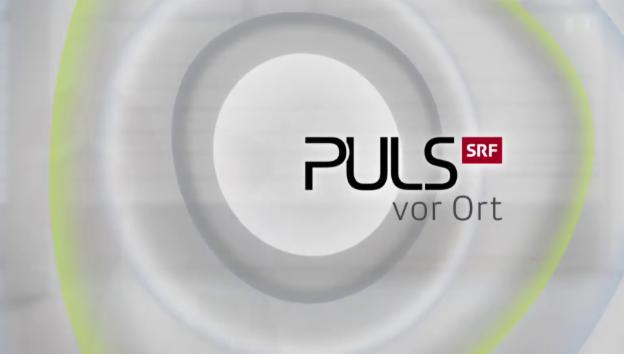 Video ««Puls vor Ort» zur Palliativmedizin» abspielen
