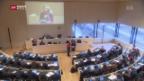 Video «Journalisten-Gewerkschaft kritisiert Regierung» abspielen