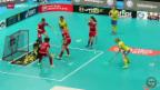 Video «Unihockey: WM-Halbfinal Schweden-Schweiz» abspielen