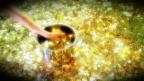 Video «Pensionskassen: Viel zu hohe Vermögensverwaltungskosten» abspielen