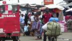 Video «USA fordert weltweite Solidarität mit Ebola-Ländern» abspielen