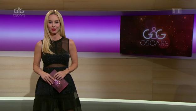 Video «Einstimmung auf die 90. Oscar-Verleihung» abspielen