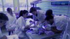 Video «Ärztemangel oder Ärzteschwemme?» abspielen