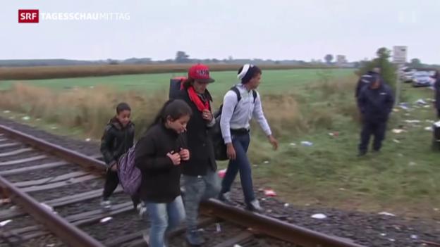 Video «Flüchtlingskrise in Europa» abspielen