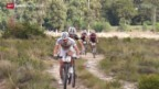 Video «Mountainbike: Cape Epic» abspielen