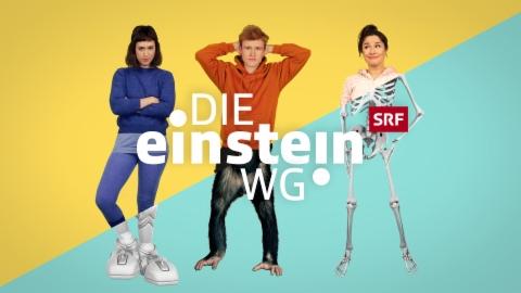 Die Einstein-WG
