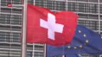 Video «Eine Mehrheit will mit Brüssel verhandeln» abspielen