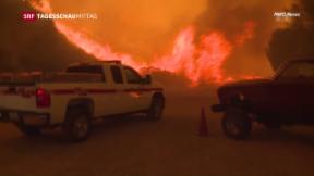 Video «Grosse Waldbrände in Kalifornien» abspielen