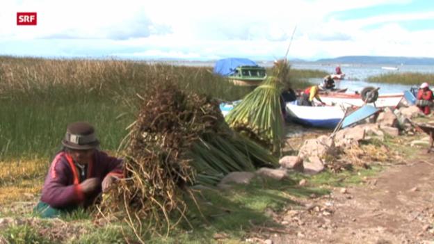 Video «Die unbarmherzigen Samariter: Mikrofinanz (2/5)» abspielen