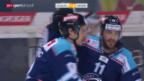 Video «Eishockey: NLA, Rapperswil - Ambri» abspielen