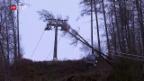 Video «Bäume fallen auf Gondelbahn» abspielen