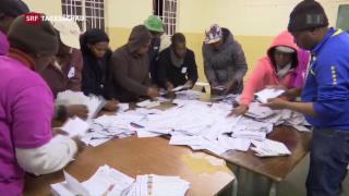 Video «Verluste für ANC bei Wahlen in Südafrika» abspielen