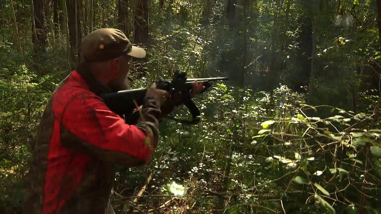 Mangelnde Treffsicherheit der Jäger