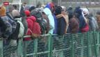 Video «Zahlreiche Flüchtlinge stranden in Calais» abspielen