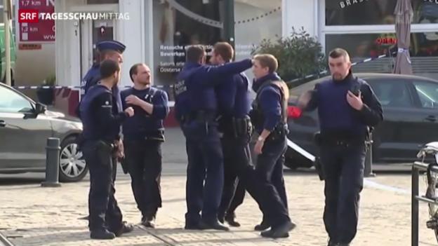 Video «Brüssel: Zwei Verdächtige bei Terror-Razzia gefasst» abspielen
